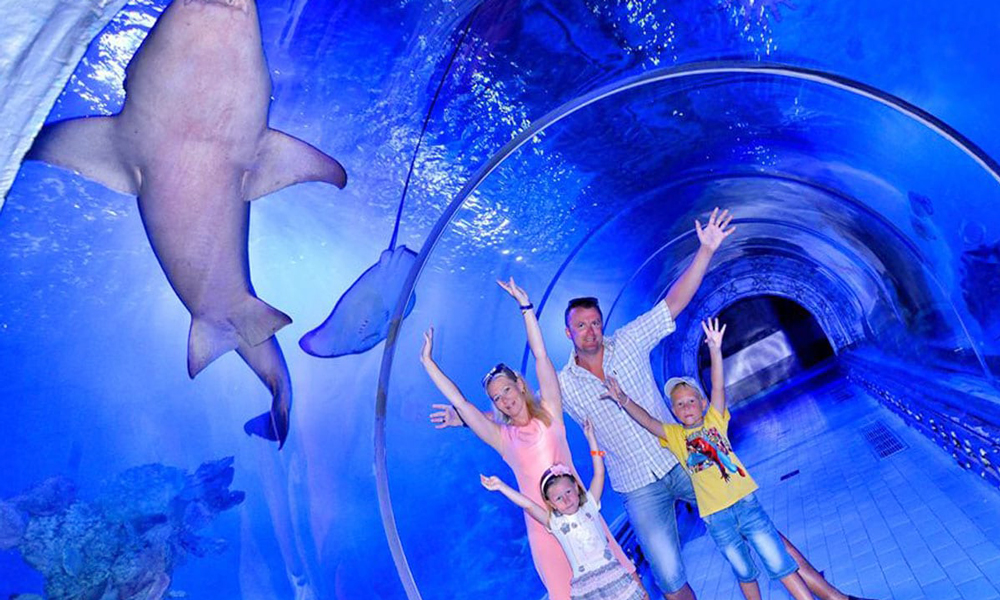 Hurghada Aquarium - Things to Do in Hurghada - Egypt Tours Portal