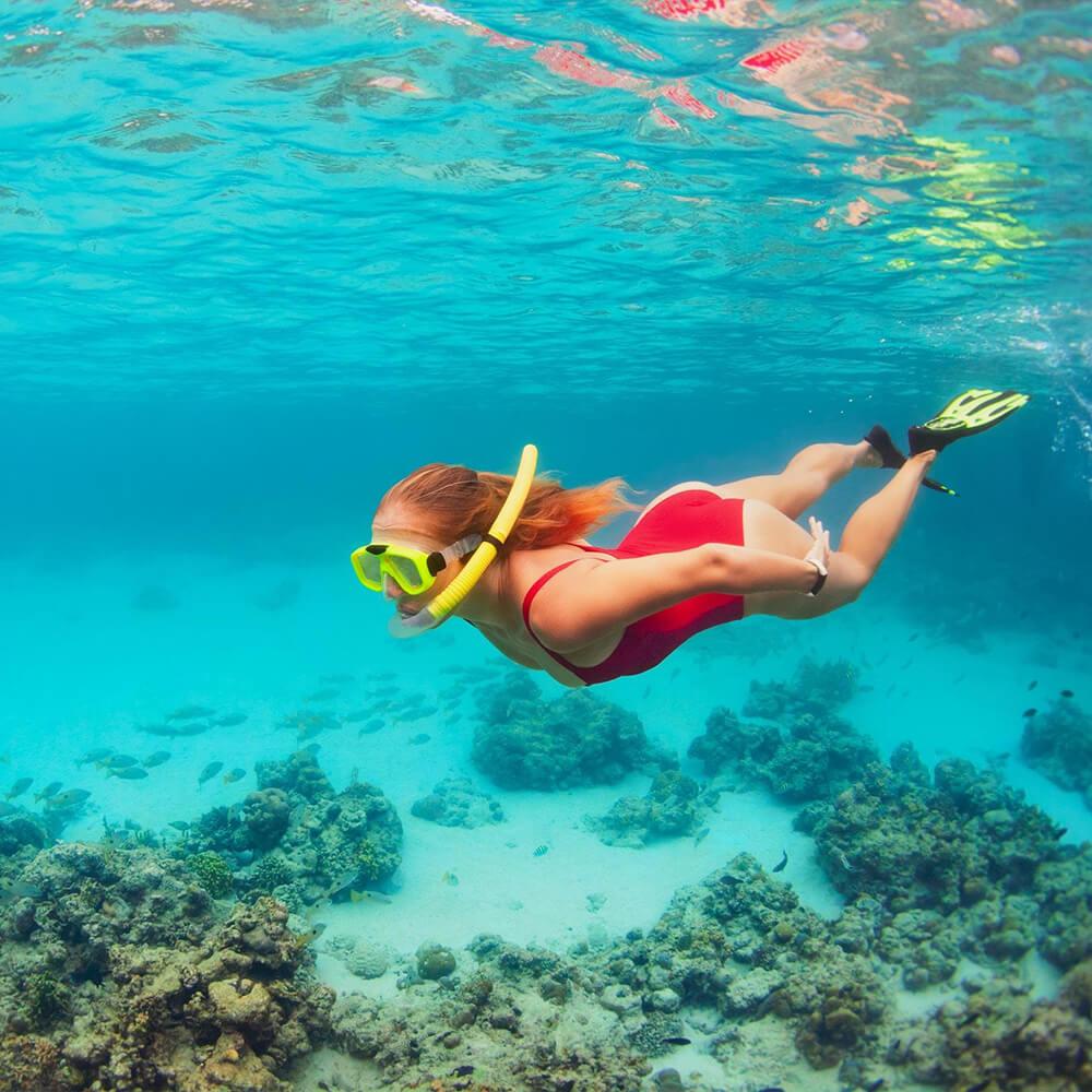 Snorkeling Travel Alerts Safety Guidelines - Egypt Tours Portal