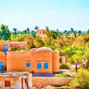 Tour to Fayoum Oasis From Cairo