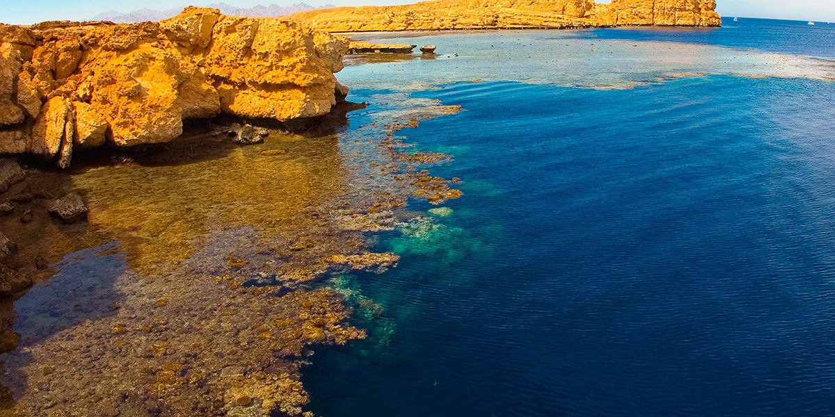 Ras Mohammed National Park - Things to do in Sharm El Sheikh With Outdoor Activities - Egypt Tours Portal