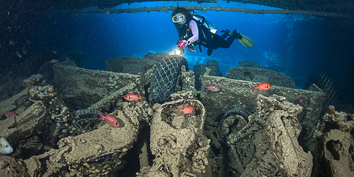 Thistlegorm Dive Site - Things to do in Sharm El Sheikh With Outdoor Activities - Egypt Tours Portal