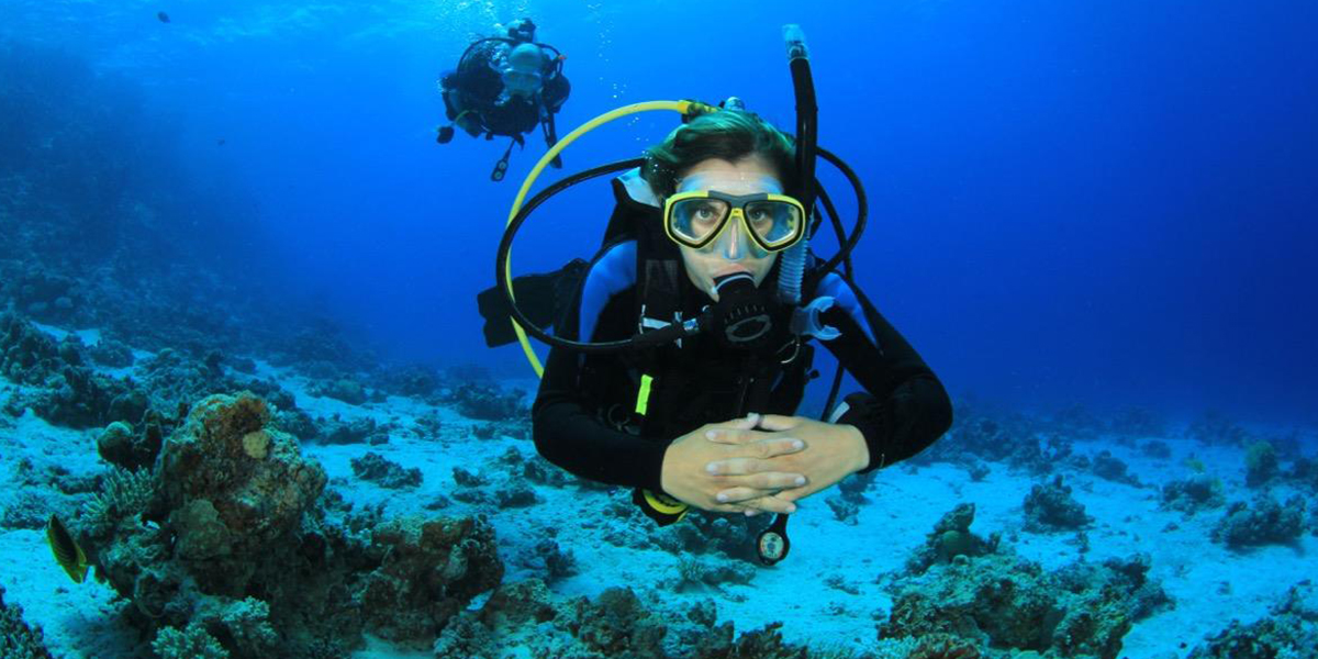 Yolanda Reef Dive Site - Things to do in Sharm El Sheikh With Outdoor Activities - Egypt Tours Portal